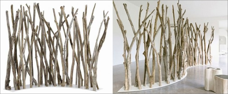 tree branch divider wood